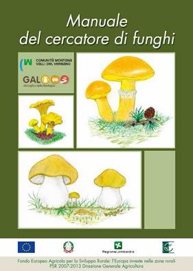 Calendario Funghi.Raccolta Funghi